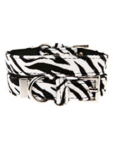 Zebra Print Fabric Collar - Our Faux Zebra collar is a contemporary animal print style and is right on trend. It is lightweight and incredibly strong. The collar has been finished with chrome detailing including the eyelets and tip of the collar. A matching lead, harness and bandana are available to purchase separately. You ca...